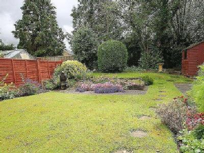 Grangefields Road, Guildford - Garden
