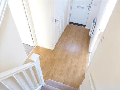 House to let, Dolphin Road - Garden
