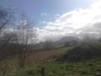 Carnalbanagh Road, Broughshane, County Antrim, Bt42