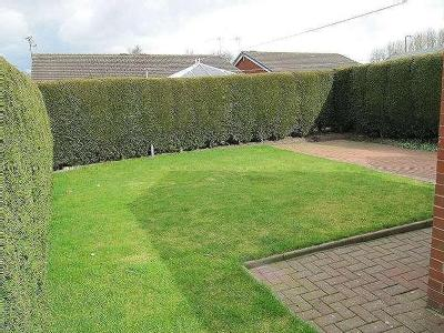 House to rent, Humber Drive - Garden