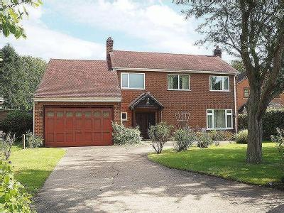 The Spinney, Winthorpe, Ng24 - Patio
