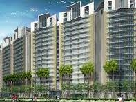 4BHK DLF Golf Course Road, Gurgaon
