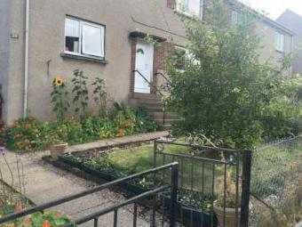 Campsie Road, Perth Ph1 - Garden