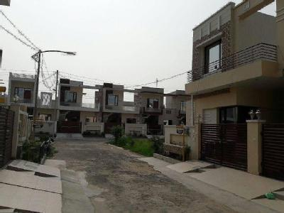Friends Colony, other, jalandhar