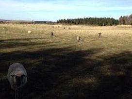 Plot With Land For Sale Cuminestown, Turriff Ab53