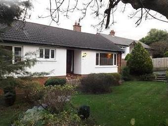 Seahill Road, Holywood Bt18 - Garden