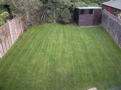 House to rent, Stanhope Road - Garden