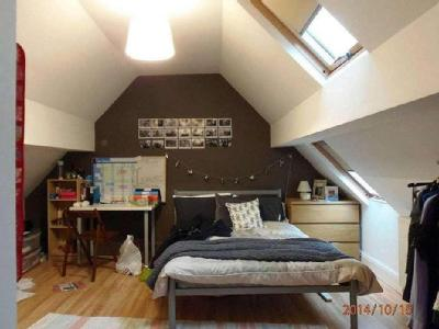 House to let, Brook Road - Garden