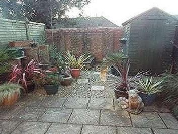 House to rent, Staplegrove - Garden