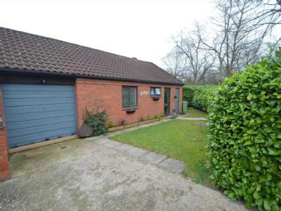 House for sale, Shelsmore - Patio