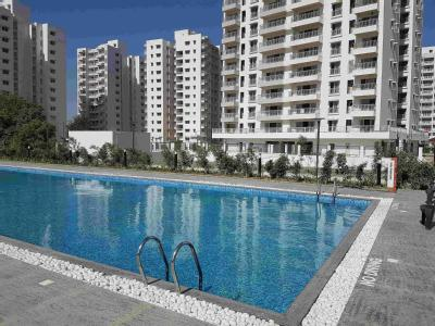 2 BHK Flat to rent, Project