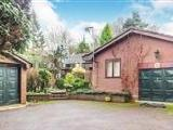 House for sale, Beauty Bank - Garden