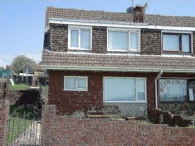 House to let, Maes Ty Canol - Garden