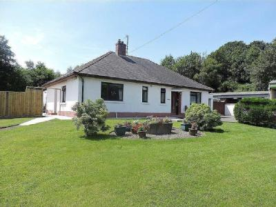 North Road, Lampeter - Bungalow