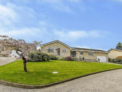 The Orchard, Stainton - Bungalow