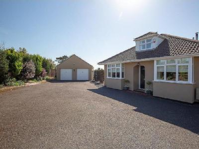 Station Road, Castle Cary - Garden