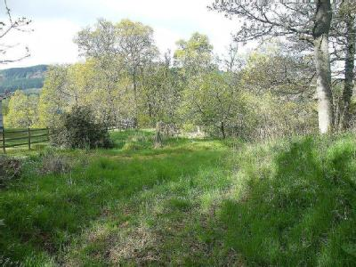 Plot at East Haugh, East Haugh, Pitlochry PH16