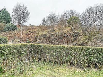 Kilton Hill, Burngreave, S3, No Chain Involved - Early Completion Available