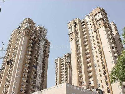3 BHK Flat to rent, 34 Pavilion - Gym
