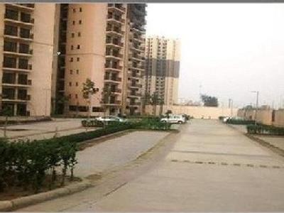 3 BHK Flat to let, Blossom County
