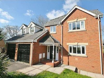 House to let, Cwrt Y Cadno - Garden