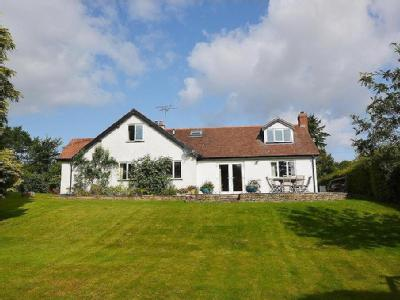 Dilwyn, Hereford - Bungalow, Detached