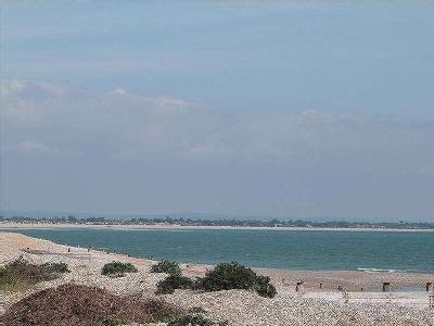 Park Copse, Selsey, Chichester, West Sussex, PO20
