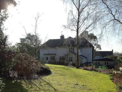 House to rent, Oxted - Garden