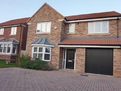 Holly Drive, Hessle, Hessle, HU13