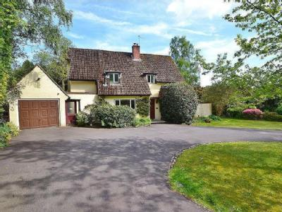 House for sale, Hiltingbury - Garden