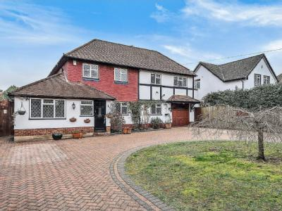 Wilbury Avenue, Cheam SM2 - Garden