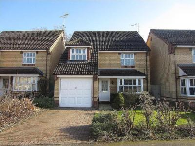 Coltsfoot Way, Thetford - Detached