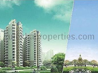 Sector 71, Gurugram, Haryana, Sohna Road, Gurgaon