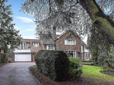 House for sale, Albion Hill - Garden