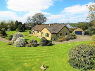 House for sale, Axminster - Bungalow