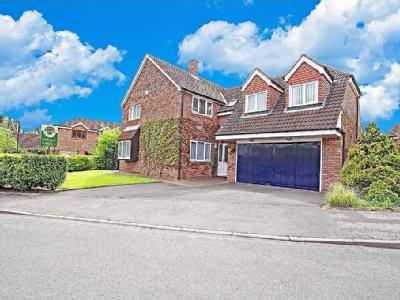 Airedale Avenue, Tickhill - House