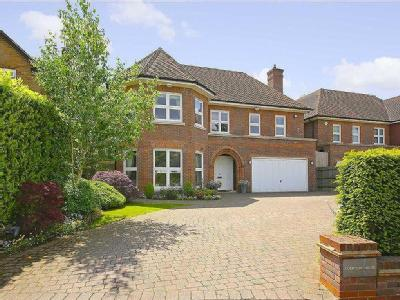 Harmsworth Way, London N20 - Garden