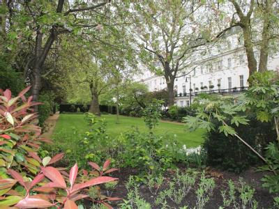 Chester Square, Belgravia, London SW1W