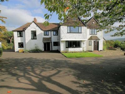 House for sale, Deepdale - Fireplace