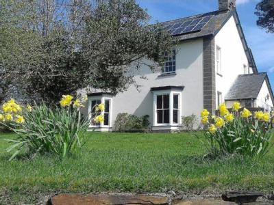 House for sale, Pentre Bach - Garden