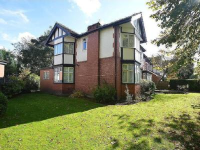 New Hall Avenue, Salford, M7 - Garden