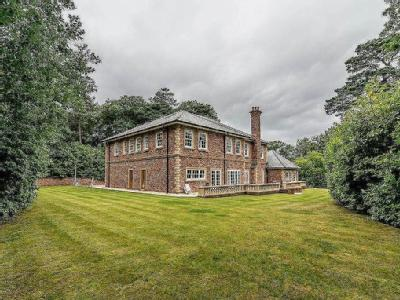 Streetly Wood, Streetly, Sutton Coldfield,