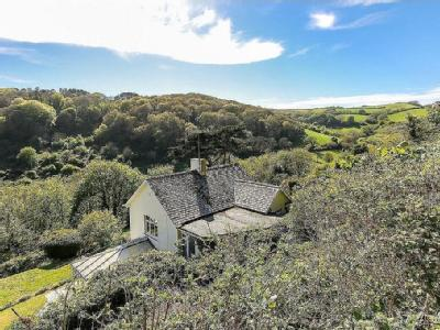 House for sale, Salcombe - Garden