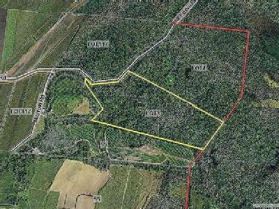 Lot 3 Mount Coom Road, Lower Tully, QLD, 4854