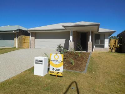 House for rent 13 Bayes Road - Patio
