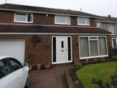 The Demesne, Ashington NE63 - Garden