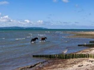 Direct Solent Frontage, New Forest National Park SO42