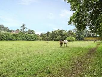 Todmore, Greatham, Liss, Hampshire GU33