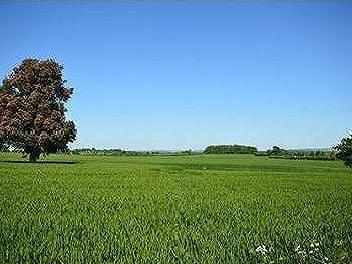 Approx 1065 Acres Land At, Kingsdon, Somerton, Somerset, TA11