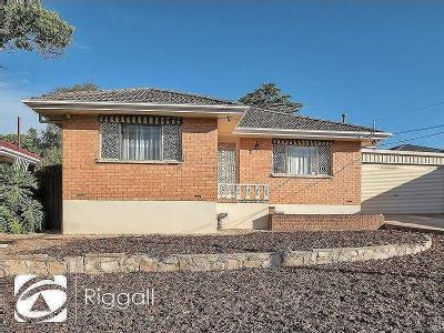 19 Alawa Avenue, Modbury North, SA, 5092